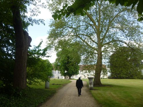 Abbaye-Bon-Port-Avancée dans Forêt- 234