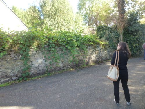 2013-10-05 Blog-Angers-Marche- 270