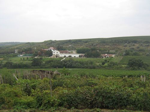 Moldavie-PurcariWinery-Lebowsyclone-2010-Wikipedia