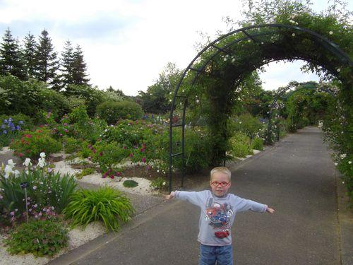 Famille amis envies humeur ma p 39 tite bulle for Amis jardin botanique