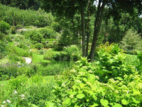 vert-Berchigranges-juin-09.jpg