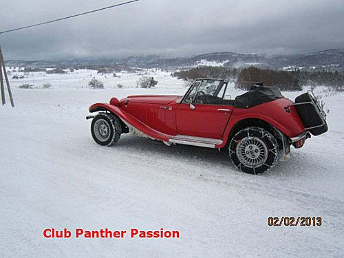 Panther hivernale 33-b