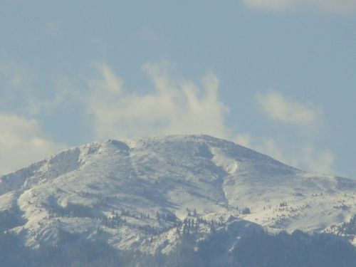 pyrenees-2.JPG