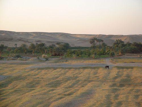 Au-bord-du-Nil.jpg