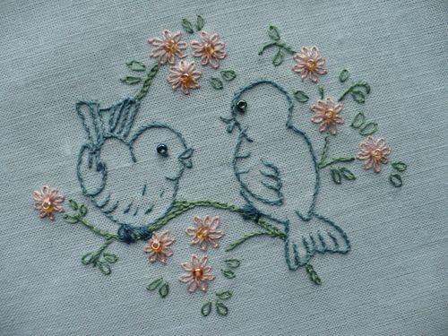 oiseau meli 3