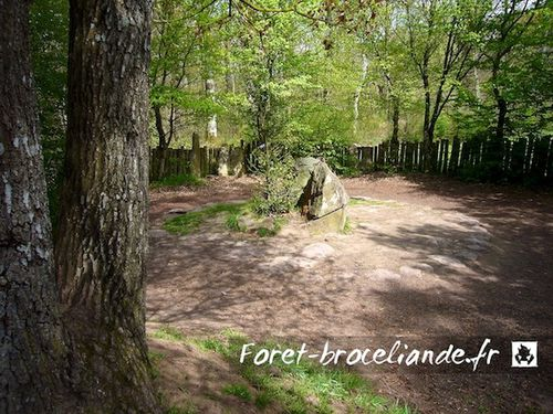 tombeau-merlin-foret-broceliande_003.jpg