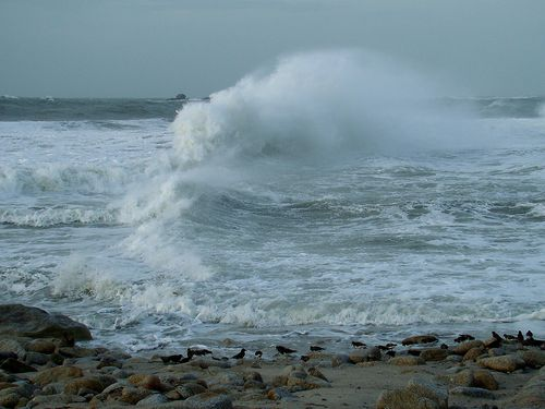 2462-Vague-a-LESCONIL.jpg