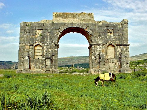 2274-VOLUBILIS-Arc-de-Caracalla.jpg