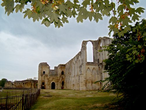 25078-MAILLEZAIS-Ruines-Cathedrale-St-Pierre.jpg