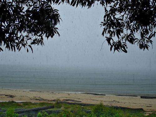 1083-NYONIE-La-pluie.jpg