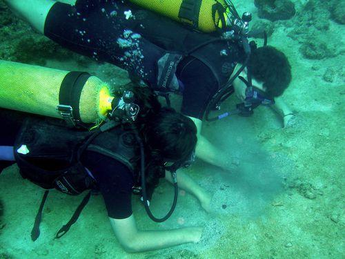 5182-Malendure-plongeurs-sable-chaud.jpg