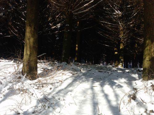 paysage-neige-8