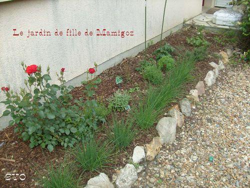Jardin-de-fille-14-06-2010-Mamigoz-.JPG