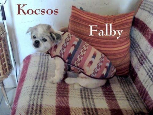 Kocsos-Falby1-Mamigoz-copie-1