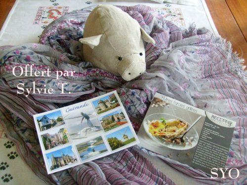 Carte-foulard-cadeau-Sylvie-T.-Mamigoz.jpg
