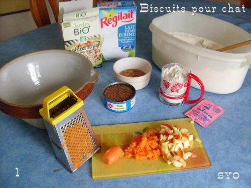 Biscuits-pour-chat--Mamigoz-1