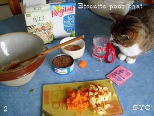 Biscuits-pour-chat-Mamigoz-2