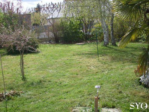 Jardin-11-04-12-Mamigoz--2-.JPG