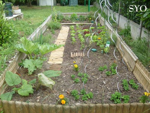 Jardin de Fille-15-06-2012-Mamigoz (19)