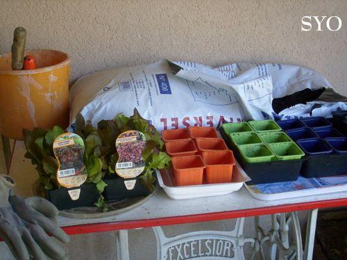 Rempotage salades-24-04-2103-Mamigoz (1)