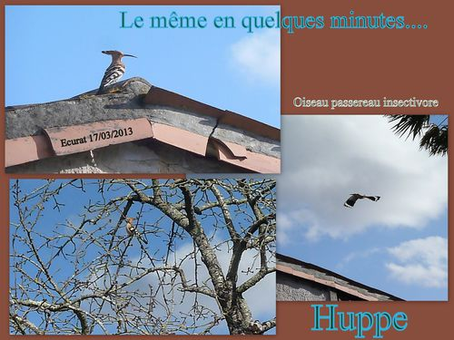 Juin 2012-005-copie-3