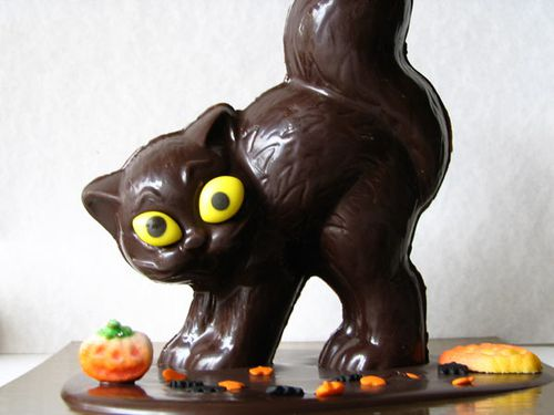 chocolat-chat-g