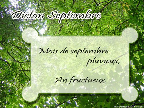 http://img.over-blog.com/500x375/1/19/63/91/1/dicton-septembre-02.jpg