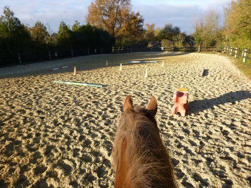 travailler cheval seul
