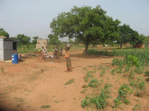 Activites-agricole-2014-9380.JPG