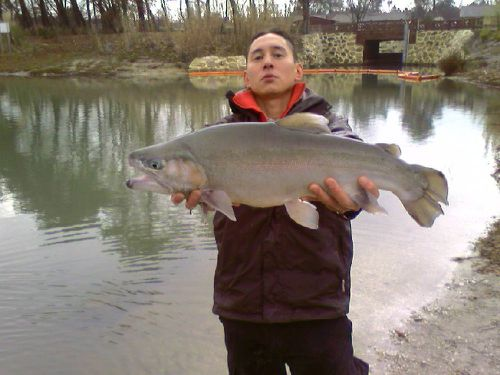 new-record-trout.jpg