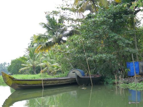 COCHIN-BACK-WATER-008.JPG