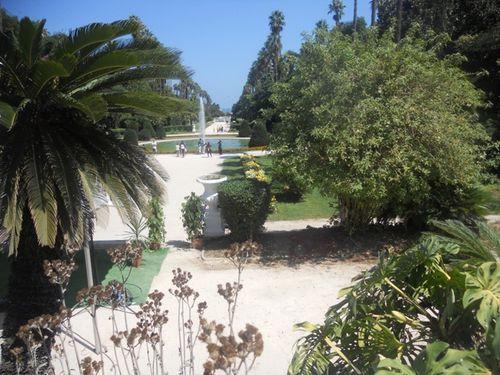 jardin (18)