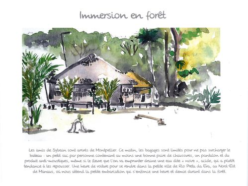 page immersion foret