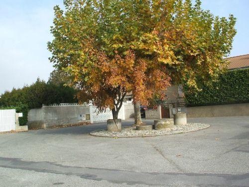 Valence-49.jpg