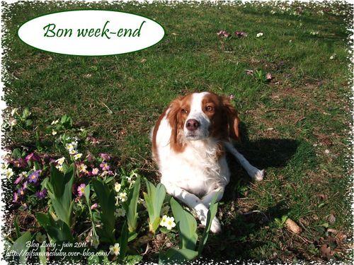 bon week-end Emy 916x687