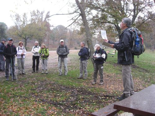 2012-11-22-Forêt de la Colle du Rouet-002