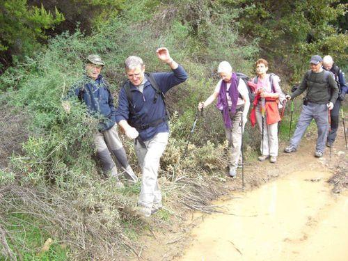 2012-11-22-Forêt de la Colle du Rouet-035