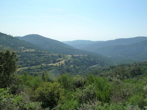 2013-04-18 Roquebrune - la Garonnette-018