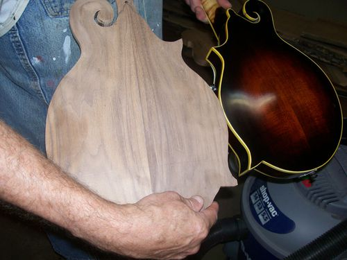 Luthier (9)