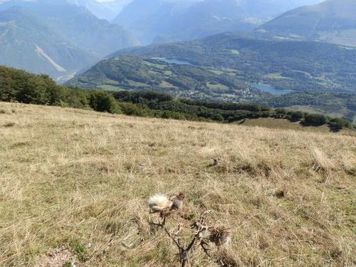 2012-09-16- Laffrey-Montagne de Conex 012