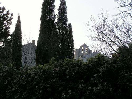 2014-03-02- Saint-Restitut (Drôme) 049