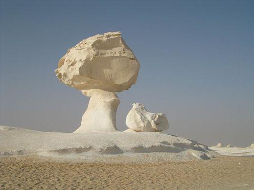 desert blanc 283RED