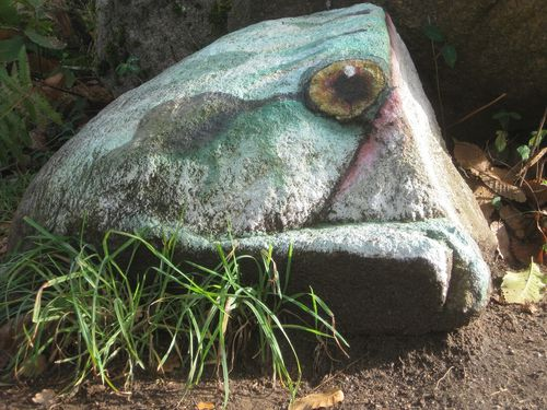 St Estéphe grenouille