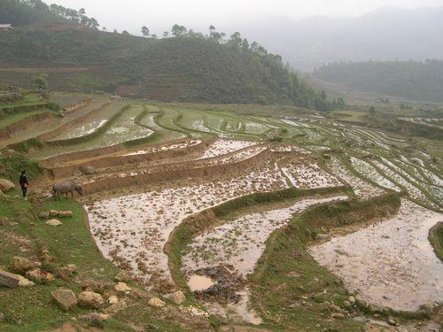 vietnamN0043-3.jpg