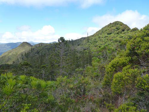 Nlle Calédonie-Mt Mou-23 nov 2014-vue sommet
