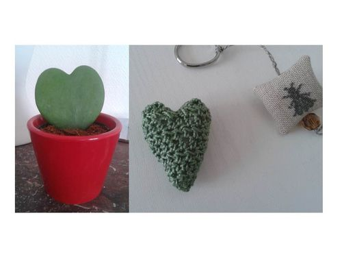 RUCHE CACTUS COEUR