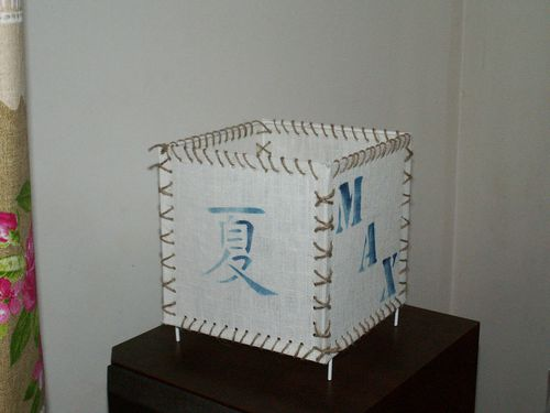 2010 10 09 lampeMAX01