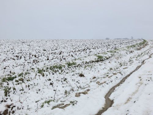 neige4.jpg