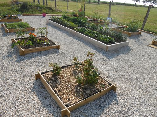 potager-carre-6.JPG