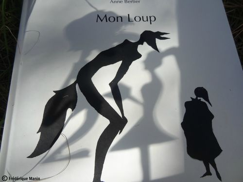 2013-09-02-ombres-Mon-Loup.jpg